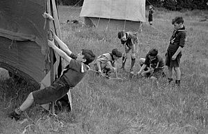 Cub Scouts Using Team Work To Pitch A Tent