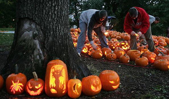 Pumpkins on display at a pumpkin festival