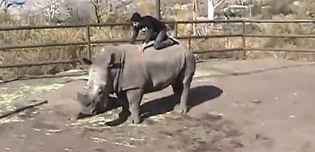 Man riding the white rhino