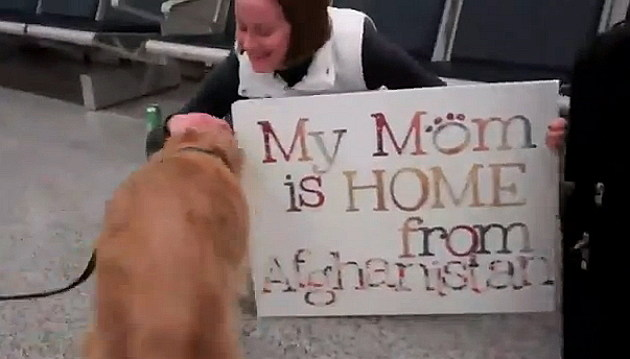 Dog Welcomes Home Soldier sign