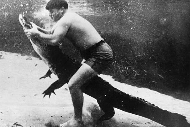 Man vs. Aligator