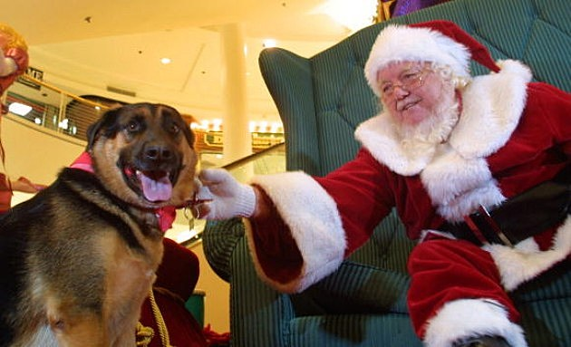 Santa Claus at the Mall has special pet night